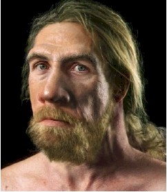 Did+neanderthals+and+humans+interbreed